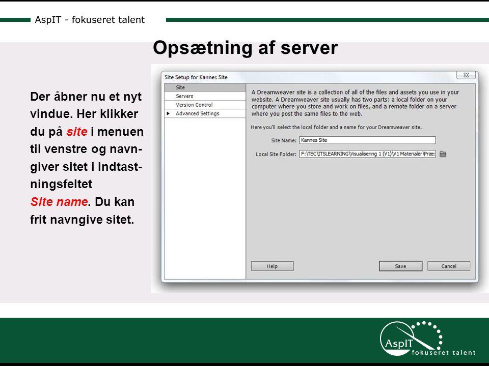 Opsætning af server Der åbner nu et nyt vindue.
