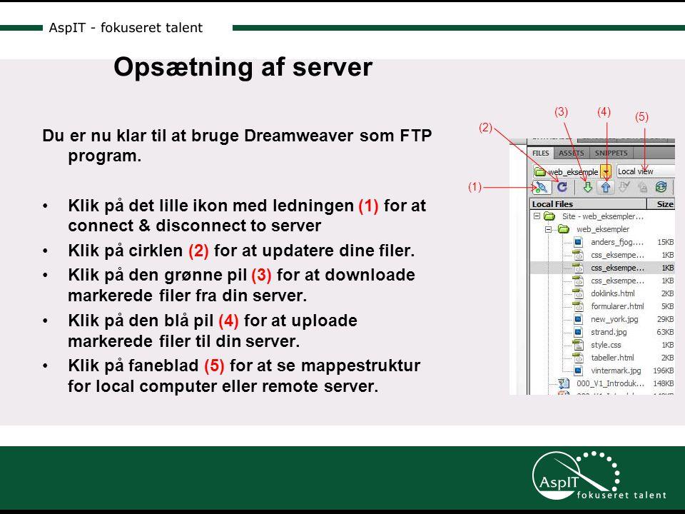 Opsætning af server Du er nu klar til at bruge Dreamweaver som FTP program.