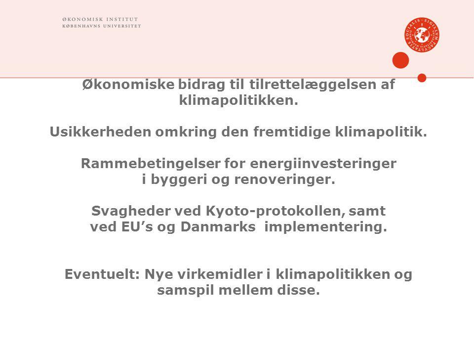 Økonomiske bidrag til tilrettelæggelsen af klimapolitikken.