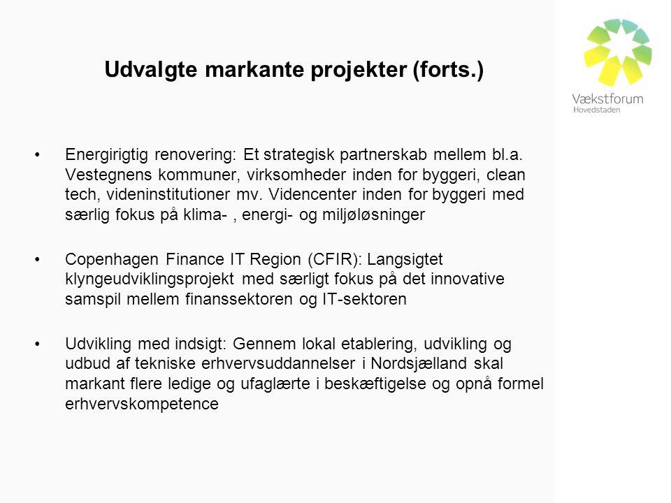 Udvalgte markante projekter (forts.) •Energirigtig renovering: Et strategisk partnerskab mellem bl.a.