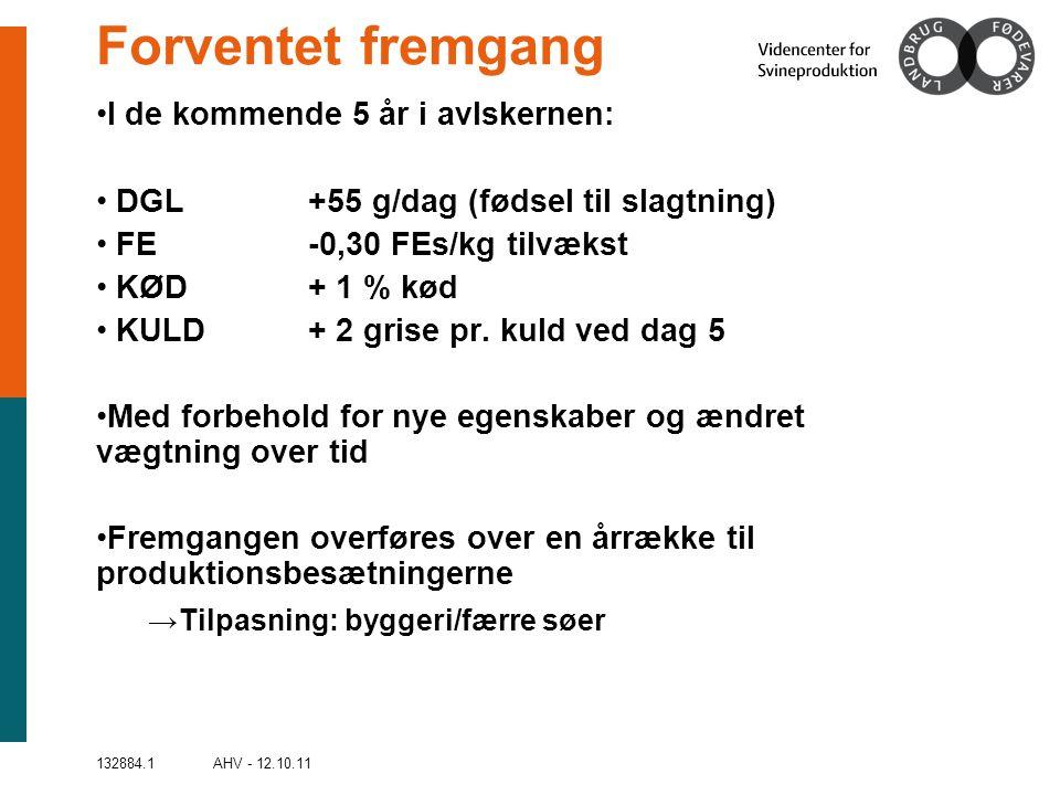 132884.1 AHV - 12.10.11 Forventet fremgang •I de kommende 5 år i avlskernen: • DGL+55 g/dag (fødsel til slagtning) • FE-0,30 FEs/kg tilvækst • KØD+ 1 % kød • KULD+ 2 grise pr.