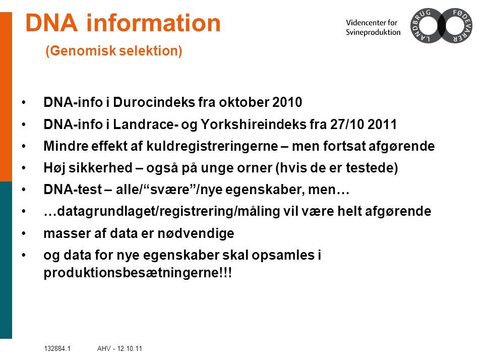 132884.1 AHV - 12.10.11 DNA information (Genomisk selektion) •DNA-info i Durocindeks fra oktober 2010 •DNA-info i Landrace- og Yorkshireindeks fra 27/10 2011 •Mindre effekt af kuldregistreringerne – men fortsat afgørende •Høj sikkerhed – også på unge orner (hvis de er testede) •DNA-test – alle/ svære /nye egenskaber, men… •…datagrundlaget/registrering/måling vil være helt afgørende •masser af data er nødvendige •og data for nye egenskaber skal opsamles i produktionsbesætningerne!!!