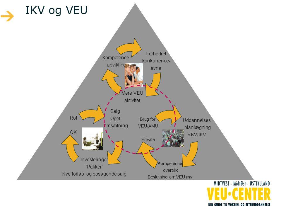 IKV og VEU Uddannelses- planlægning RKV/IKV Kompetence- overblik Beslutning om VEU mv.