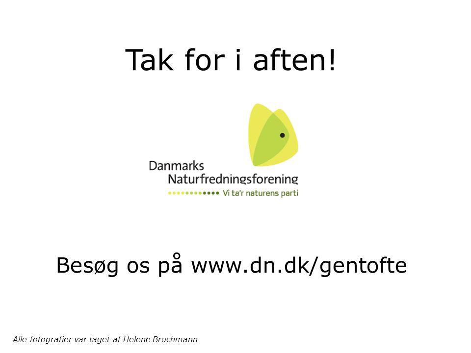 Tak for i aften! Besøg os på www.dn.dk/gentofte Alle fotografier var taget af Helene Brochmann