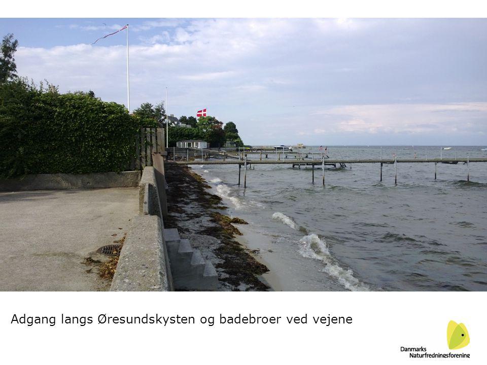 Adgang langs Øresundskysten og badebroer ved vejene