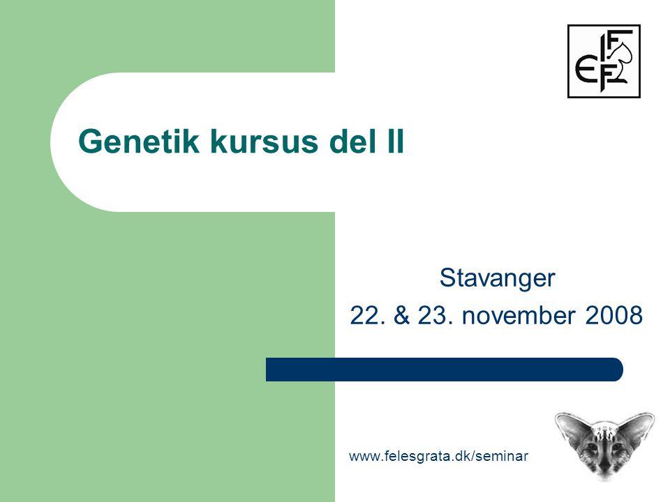 Genetik kursus del II Stavanger 22. & 23. november 2008 www.felesgrata.dk/seminar