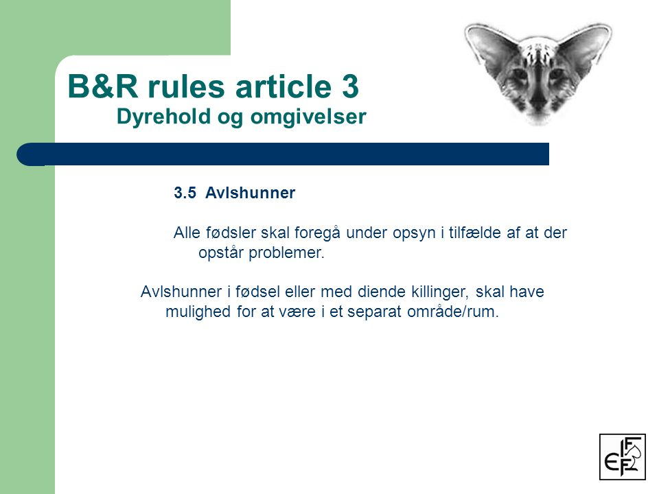 B&R rules article 3 Dyrehold og omgivelser 3.5 Avlshunner Alle fødsler skal foregå under opsyn i tilfælde af at der opstår problemer.