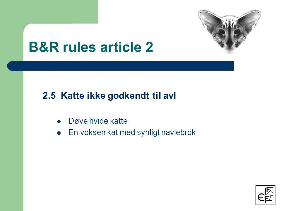 B&R rules article 2 2.5 Katte ikke godkendt til avl  Døve hvide katte  En voksen kat med synligt navlebrok