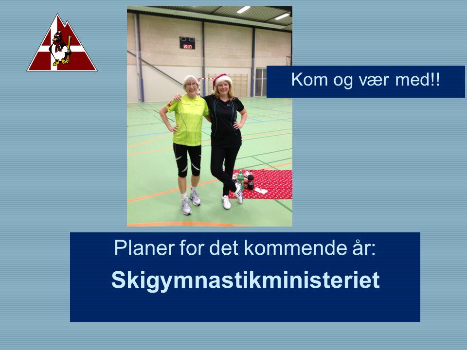 Planer for det kommende år: Skigymnastikministeriet Kom og vær med!!