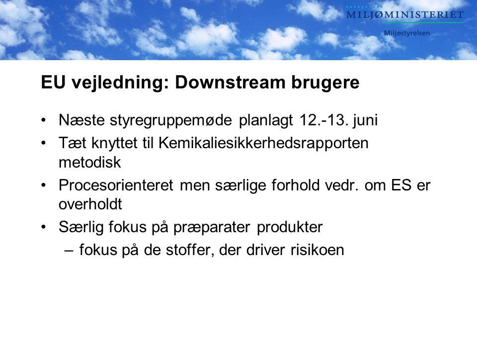 EU vejledning: Downstream brugere •Næste styregruppemøde planlagt 12.-13.