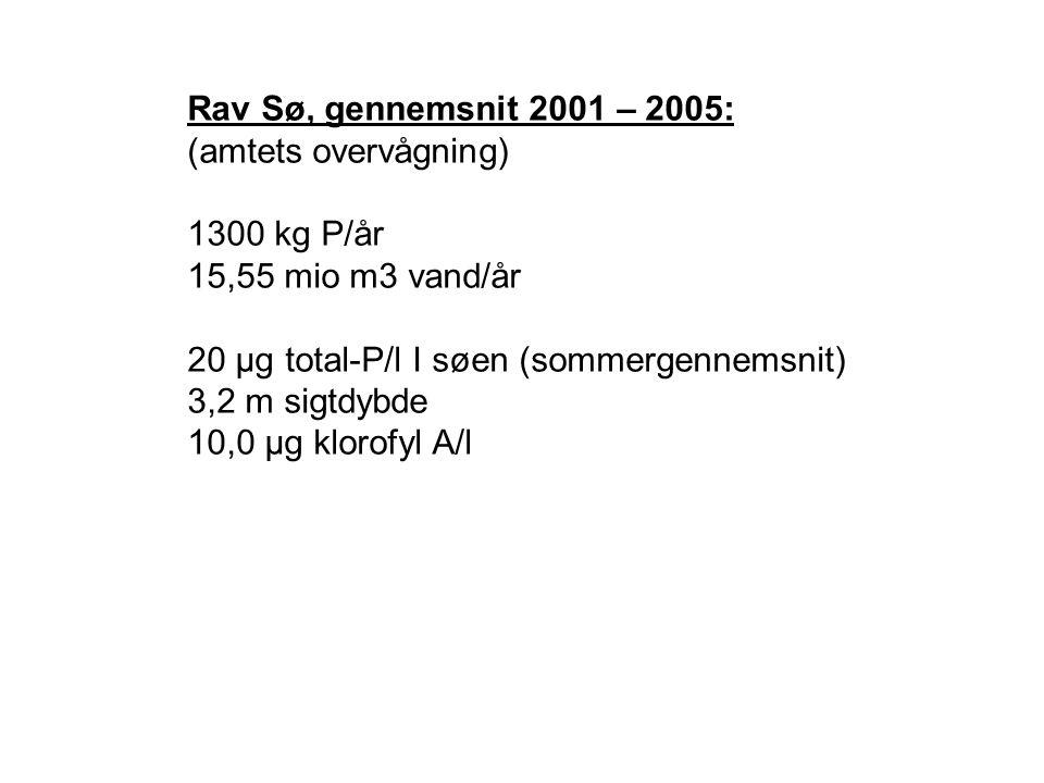 Rav Sø, gennemsnit 2001 – 2005: (amtets overvågning) 1300 kg P/år 15,55 mio m3 vand/år 20 µg total-P/l I søen (sommergennemsnit) 3,2 m sigtdybde 10,0 µg klorofyl A/l
