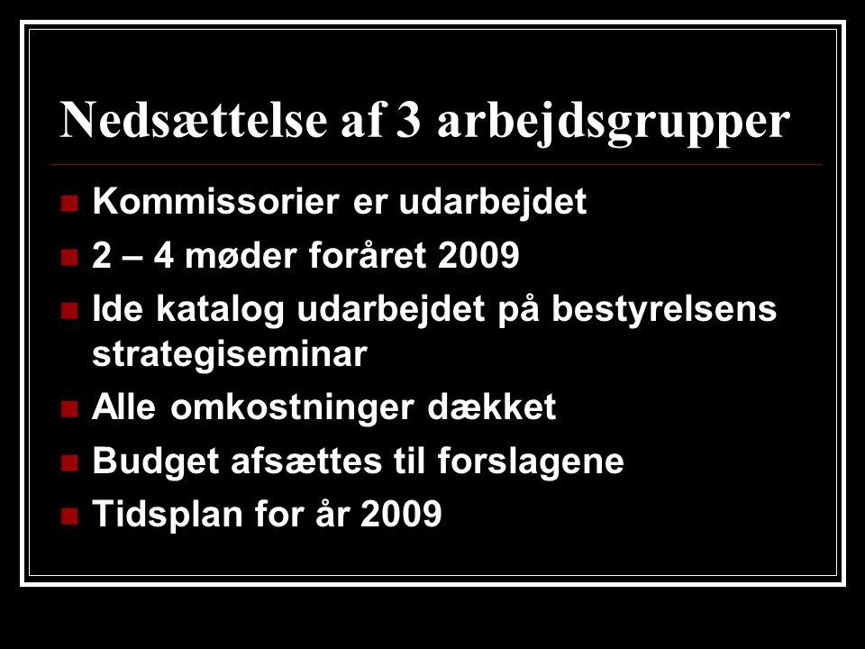 Nedsættelse af 3 arbejdsgrupper  Kommissorier er udarbejdet  2 – 4 møder foråret 2009  Ide katalog udarbejdet på bestyrelsens strategiseminar  Alle omkostninger dækket  Budget afsættes til forslagene  Tidsplan for år 2009