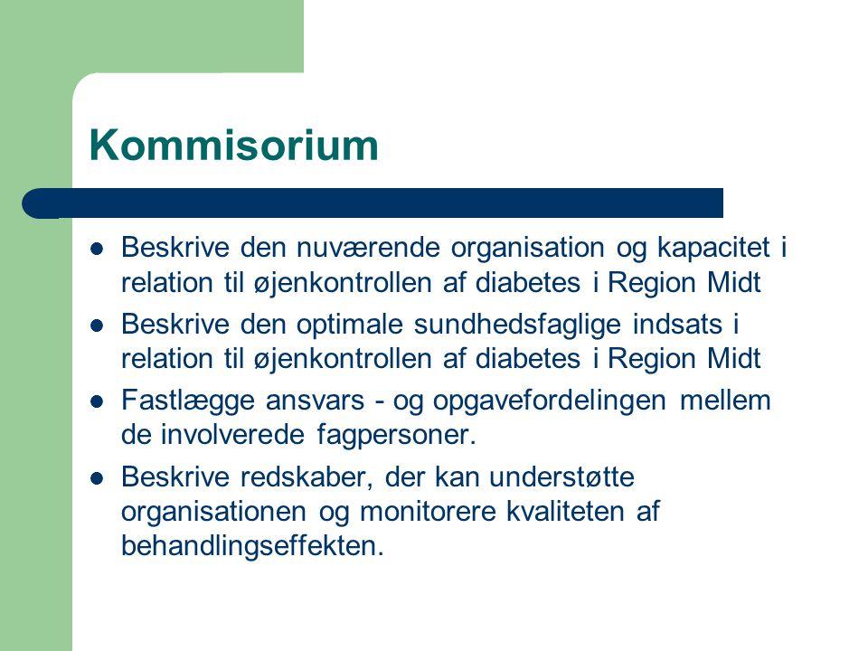 Kommisorium  Beskrive den nuværende organisation og kapacitet i relation til øjenkontrollen af diabetes i Region Midt  Beskrive den optimale sundhedsfaglige indsats i relation til øjenkontrollen af diabetes i Region Midt  Fastlægge ansvars - og opgavefordelingen mellem de involverede fagpersoner.