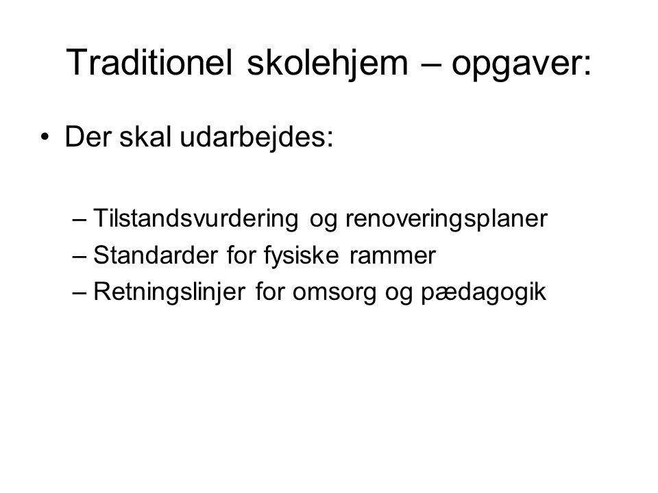 Traditionel skolehjem – opgaver: •Der skal udarbejdes: –Tilstandsvurdering og renoveringsplaner –Standarder for fysiske rammer –Retningslinjer for omsorg og pædagogik