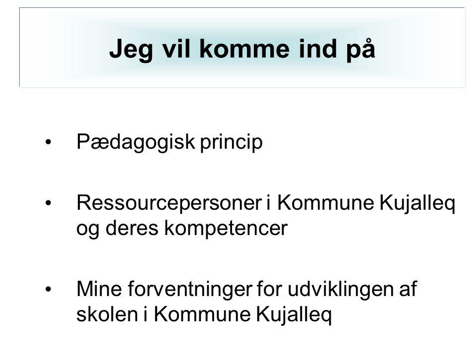 • Pædagogisk princip • Ressourcepersoner i Kommune Kujalleq og deres kompetencer • Mine forventninger for udviklingen af skolen i Kommune Kujalleq Jeg vil komme ind på