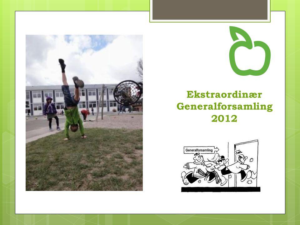 Ekstraordinær Generalforsamling 2012
