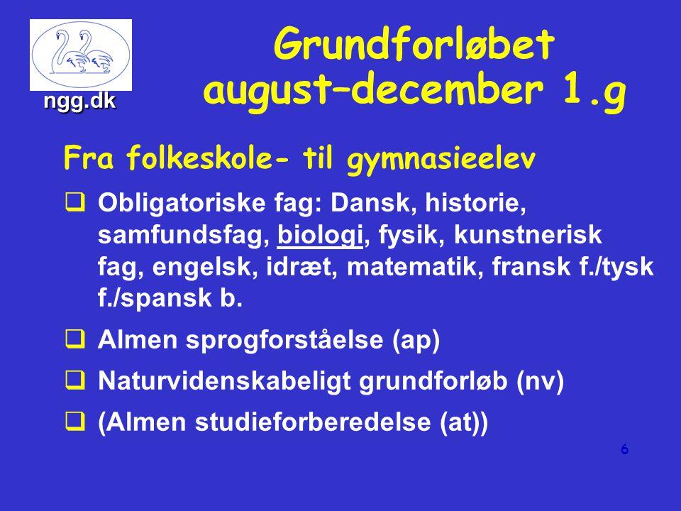 5 Obligatoriske fag Dansk A Historie A Religion C Engelsk B Idræt C Oldtidskundskab C 2.