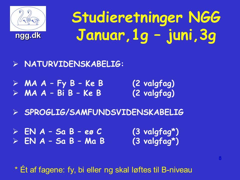 Grundforløbet august–december 1.g   Almen sprogforståelse (ap):   Sprogets struktur, funktion, grammatik og historie.