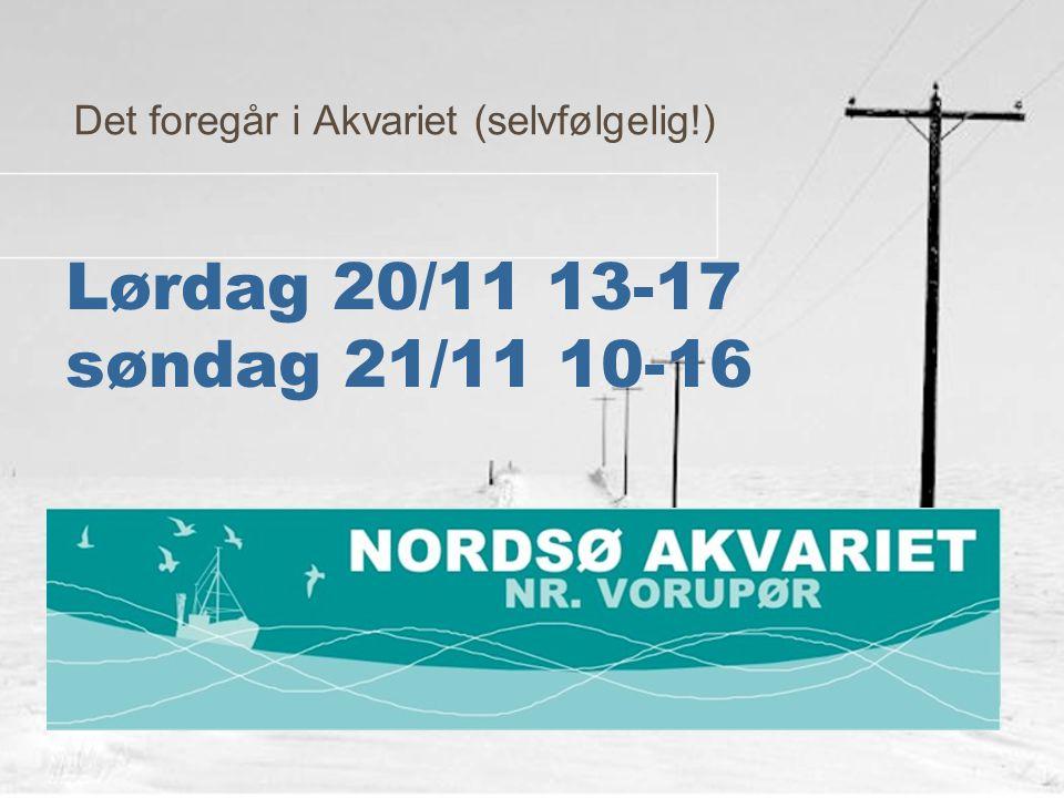 Lørdag 20/11 13-17 søndag 21/11 10-16 Det foregår i Akvariet (selvfølgelig!)
