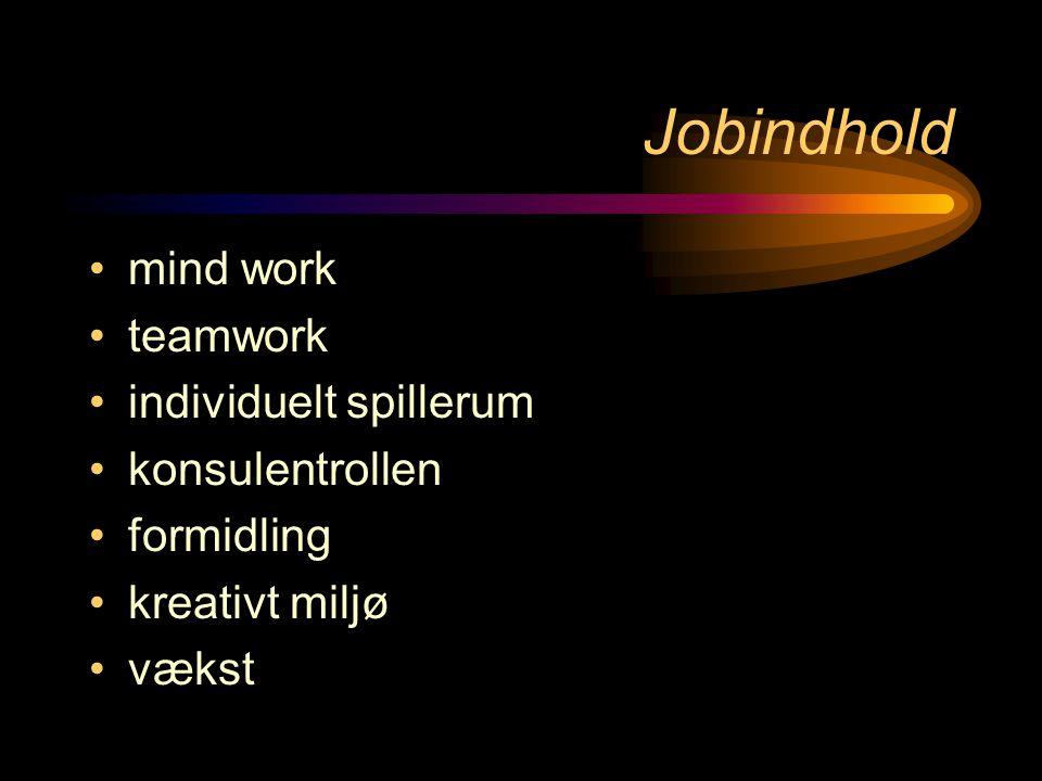 Jobindhold •mind work •teamwork •individuelt spillerum •konsulentrollen •formidling •kreativt miljø •vækst