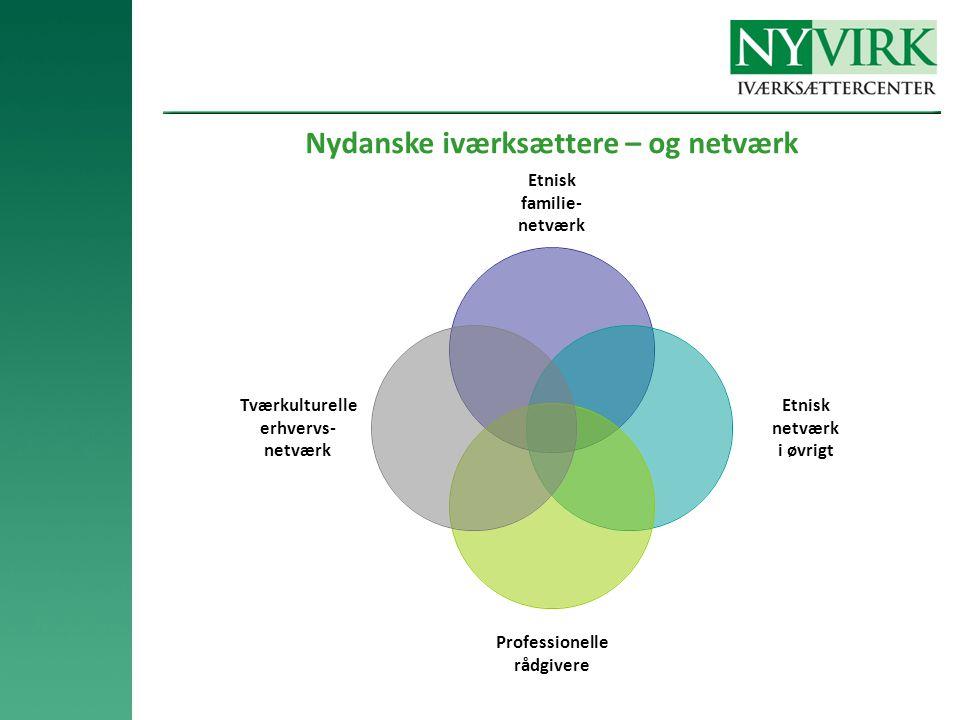 Nydanske iværksættere – og netværk Etnisk familie- netværk Etnisk netværk i øvrigt Professionelle rådgivere Tværkulturelle erhvervs- netværk
