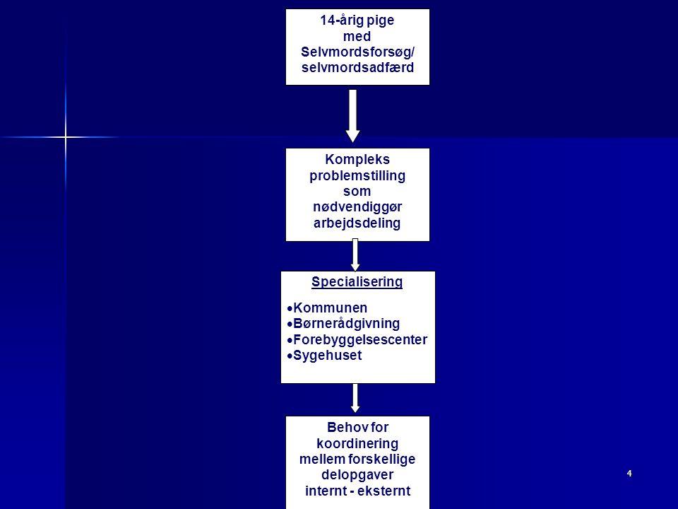 Center for Selvmordsforskning4 14-årig pige med Selvmordsforsøg/ selvmordsadfærd Kompleks problemstilling som nødvendiggør arbejdsdeling Specialisering  Kommunen  Børnerådgivning  Forebyggelsescenter  Sygehuset Behov for koordinering mellem forskellige delopgaver internt - eksternt