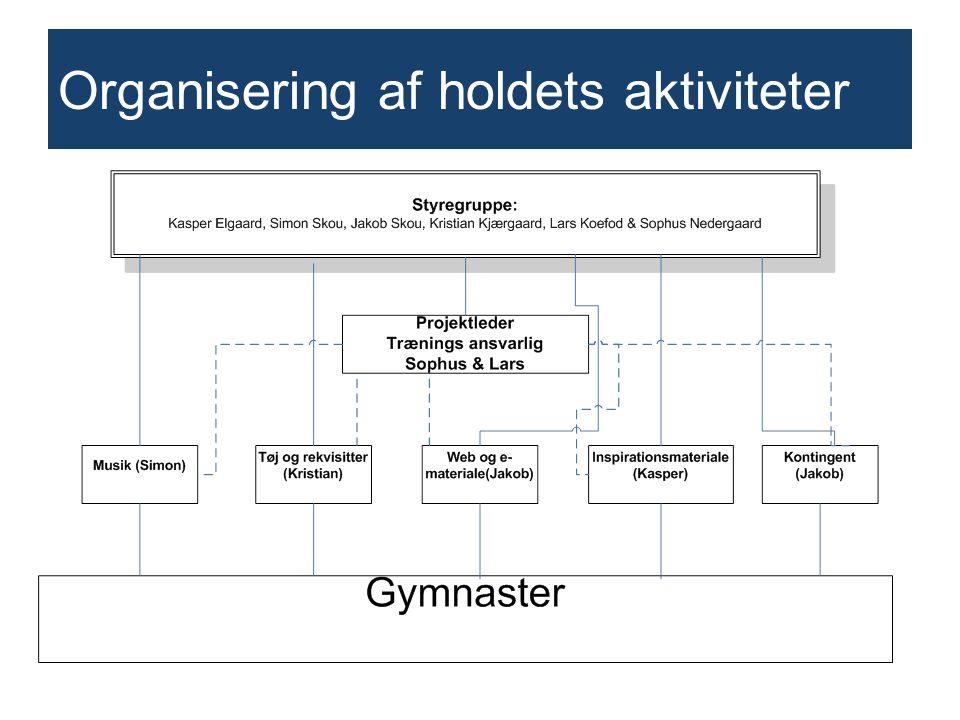 Organisering af holdets aktiviteter