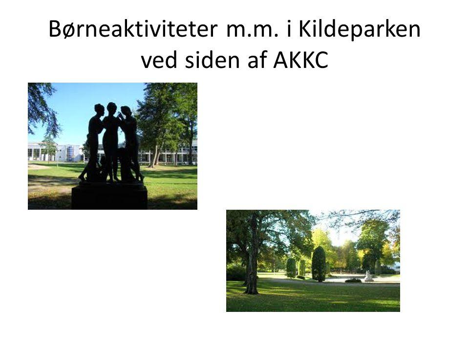 Børneaktiviteter m.m. i Kildeparken ved siden af AKKC