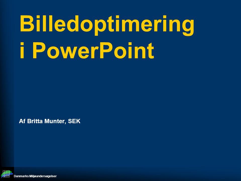 Danmarks Miljøundersøgelser Billedoptimering i PowerPoint Af Britta Munter, SEK