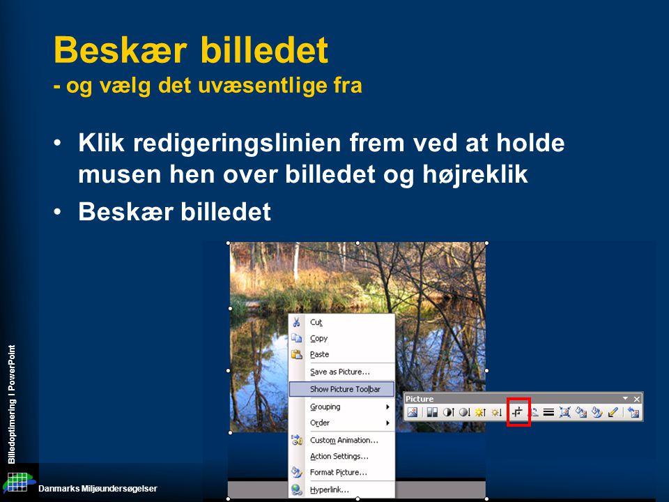 Danmarks Miljøundersøgelser Billedoptimering I PowerPoint Beskær billedet - og vælg det uvæsentlige fra •Klik redigeringslinien frem ved at holde musen hen over billedet og højreklik •Beskær billedet