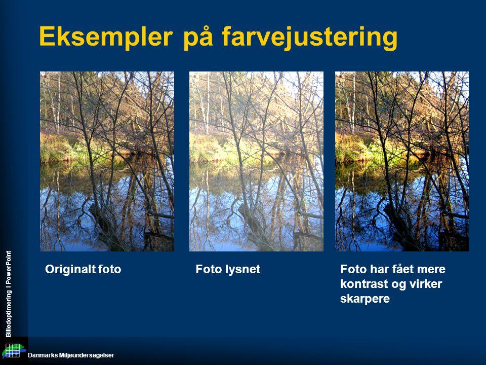 Danmarks Miljøundersøgelser Billedoptimering I PowerPoint Eksempler på farvejustering Originalt fotoFoto lysnetFoto har fået mere kontrast og virker skarpere