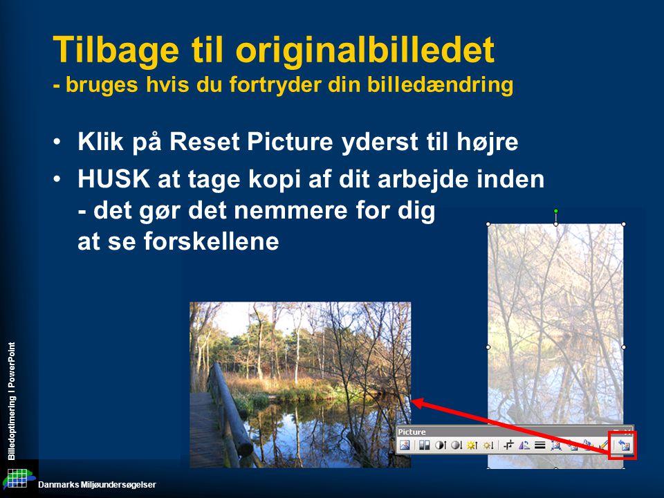 Danmarks Miljøundersøgelser Billedoptimering I PowerPoint Tilbage til originalbilledet - bruges hvis du fortryder din billedændring •Klik på Reset Picture yderst til højre •HUSK at tage kopi af dit arbejde inden - det gør det nemmere for dig at se forskellene