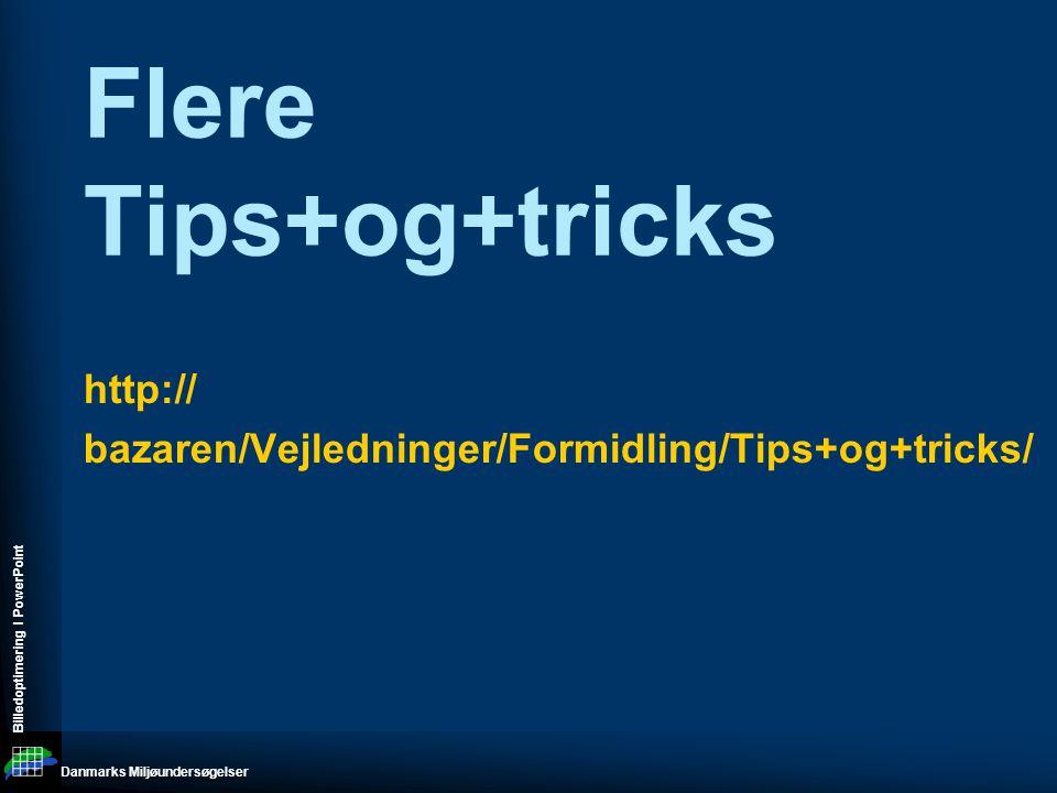 Danmarks Miljøundersøgelser Billedoptimering I PowerPoint http:// bazaren/Vejledninger/Formidling/Tips+og+tricks/ Flere Tips+og+tricks