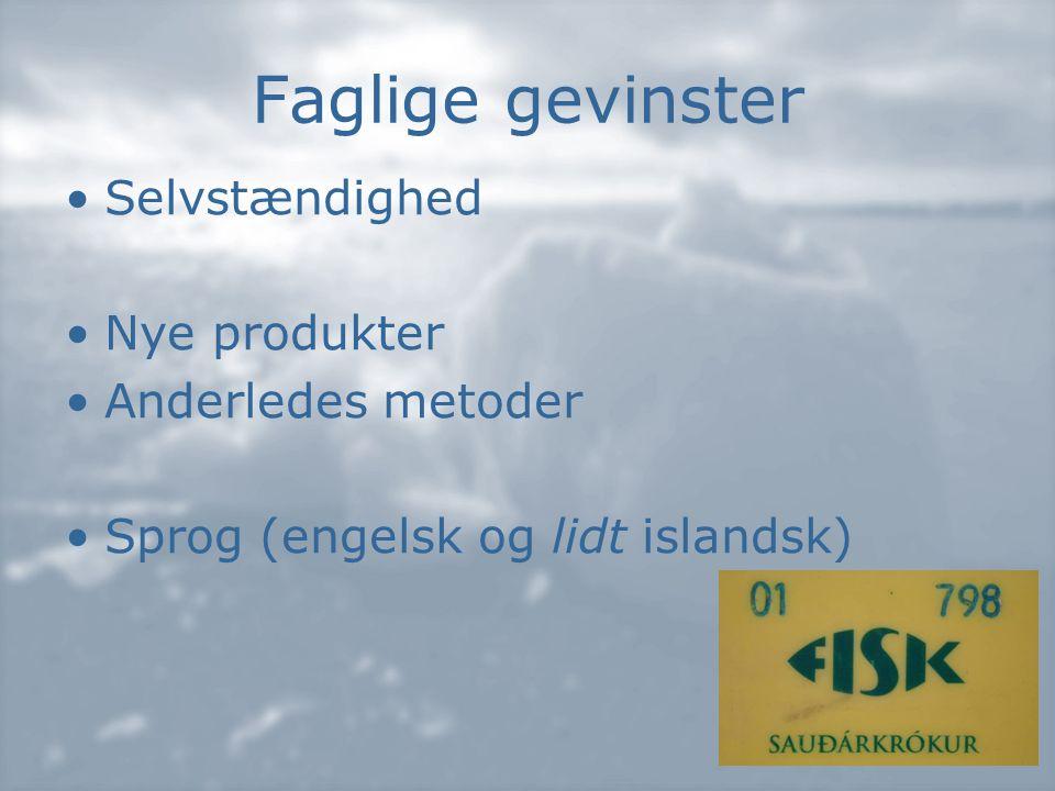 Faglige gevinster •Selvstændighed •Nye produkter •Anderledes metoder •Sprog (engelsk og lidt islandsk)