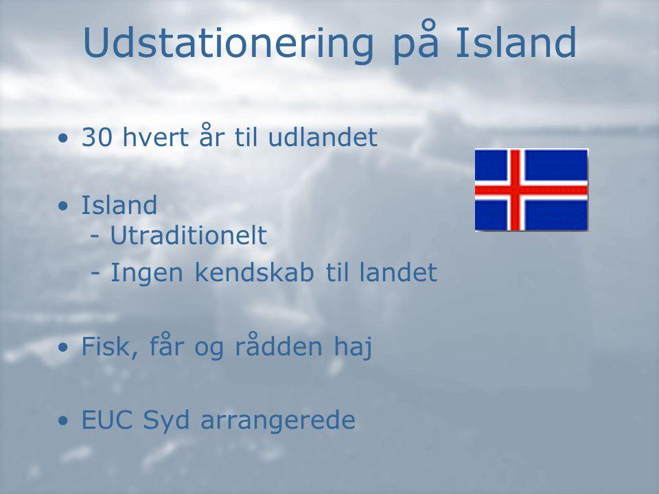 Udstationering på Island •30 hvert år til udlandet •Island - Utraditionelt - Ingen kendskab til landet •Fisk, får og rådden haj •EUC Syd arrangerede
