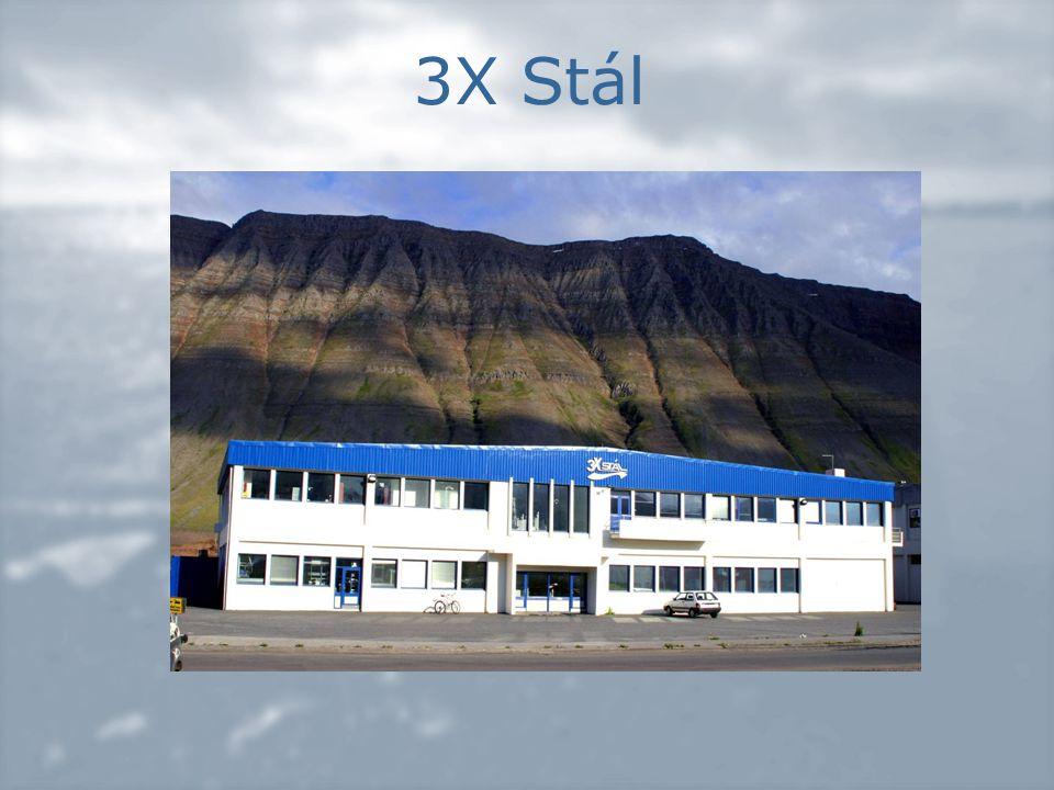 3X Stál