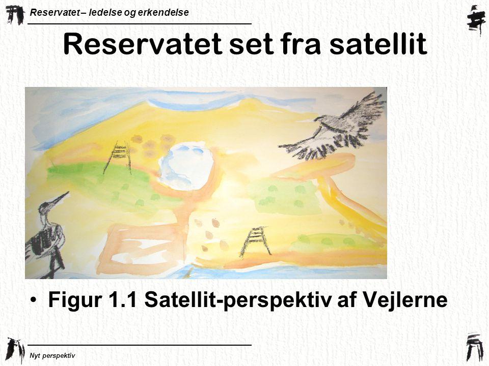 Reservatet – ledelse og erkendelse Nyt perspektiv Reservatet set fra satellit •Figur 1.1 Satellit-perspektiv af Vejlerne