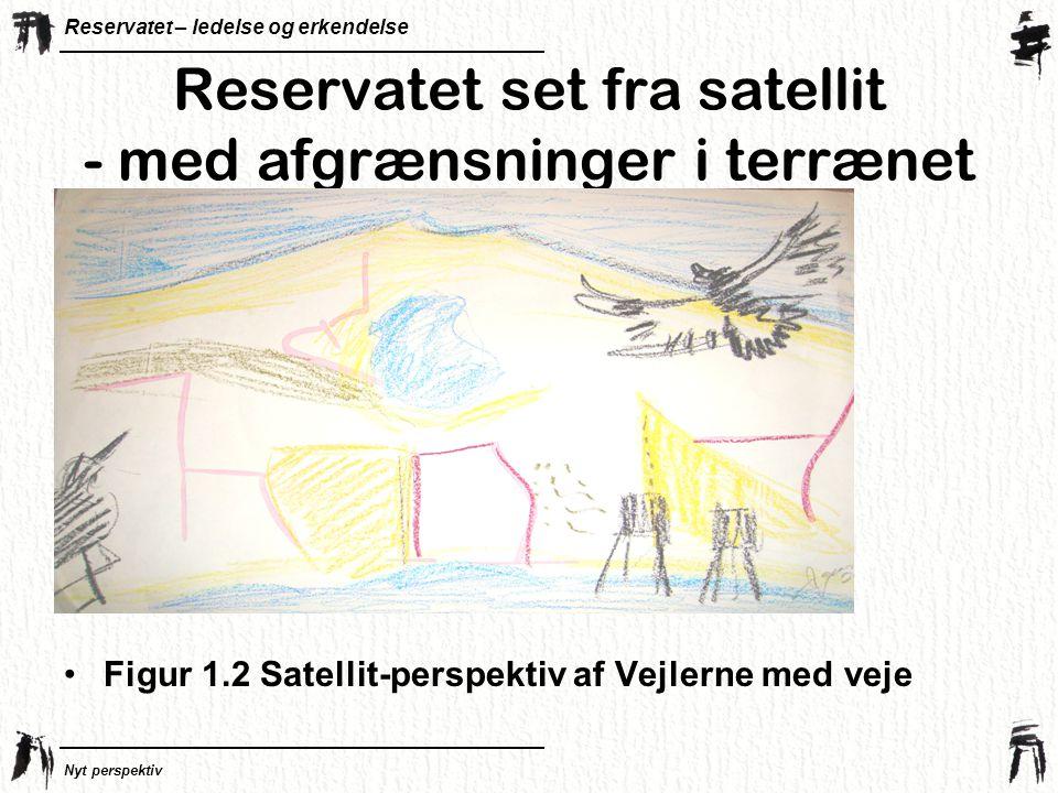 Reservatet – ledelse og erkendelse Nyt perspektiv Reservatet set fra satellit - med afgrænsninger i terrænet •Figur 1.2 Satellit-perspektiv af Vejlerne med veje