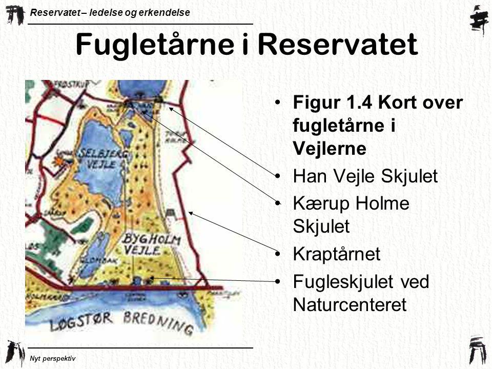 Reservatet – ledelse og erkendelse Nyt perspektiv Fugletårne i Reservatet •Figur 1.4 Kort over fugletårne i Vejlerne •Han Vejle Skjulet •Kærup Holme Skjulet •Kraptårnet •Fugleskjulet ved Naturcenteret