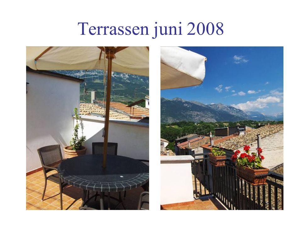 Terrassen juni 2008