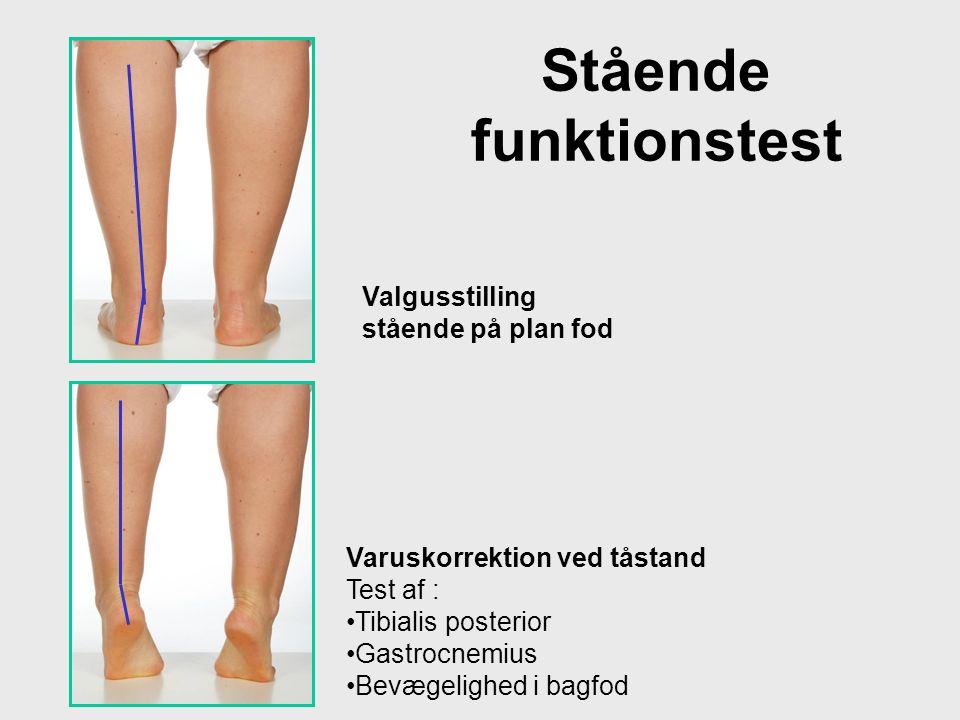 Stående funktionstest Varuskorrektion ved tåstand Test af : •Tibialis posterior •Gastrocnemius •Bevægelighed i bagfod Valgusstilling stående på plan f