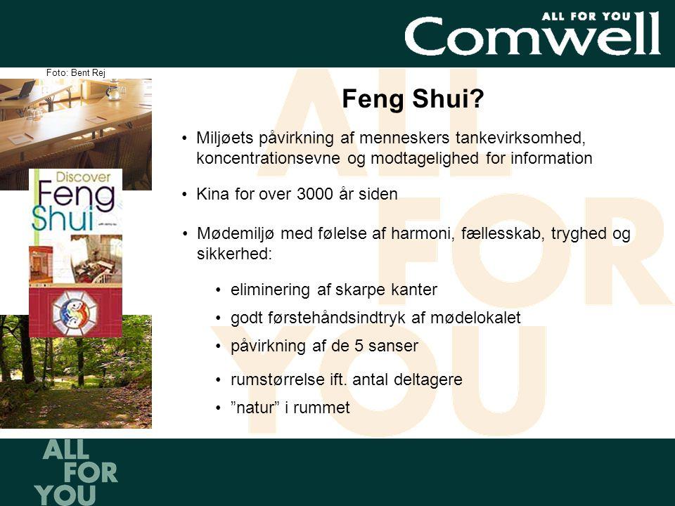 •Miljøets påvirkning af menneskers tankevirksomhed, koncentrationsevne og modtagelighed for information Feng Shui.