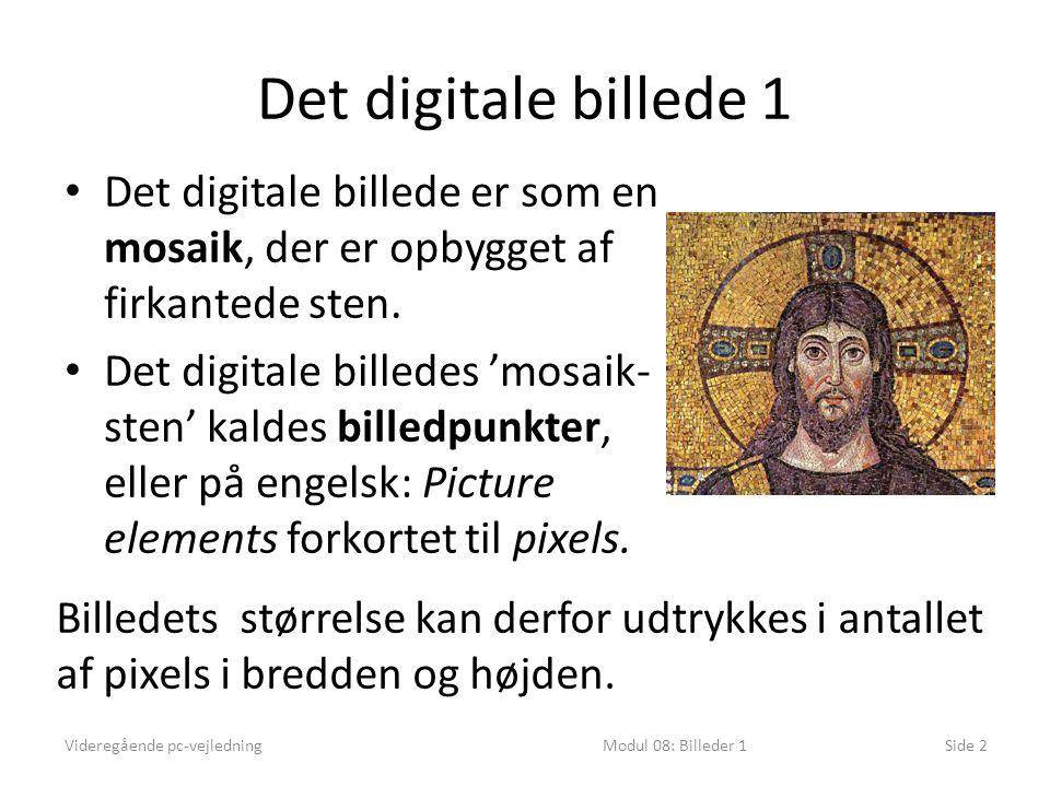 Det digitale billede 1 Videregående pc-vejledningModul 08: Billeder 1Side 2 • Det digitale billede er som en mosaik, der er opbygget af firkantede sten.