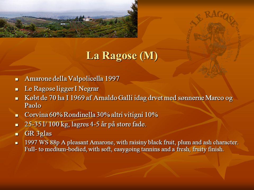 La Ragose (M)  Amarone della Valpolicella 1997  Le Ragose ligger I Negrar  Købt de 70 ha I 1969 af Arnaldo Galli idag drvet med sønnerne Marco og Paolo  Corvina 60% Rondinella 30% altri vitigni 10%  25-35 l/ 100 kg, lagres 4-5 år på store fade.
