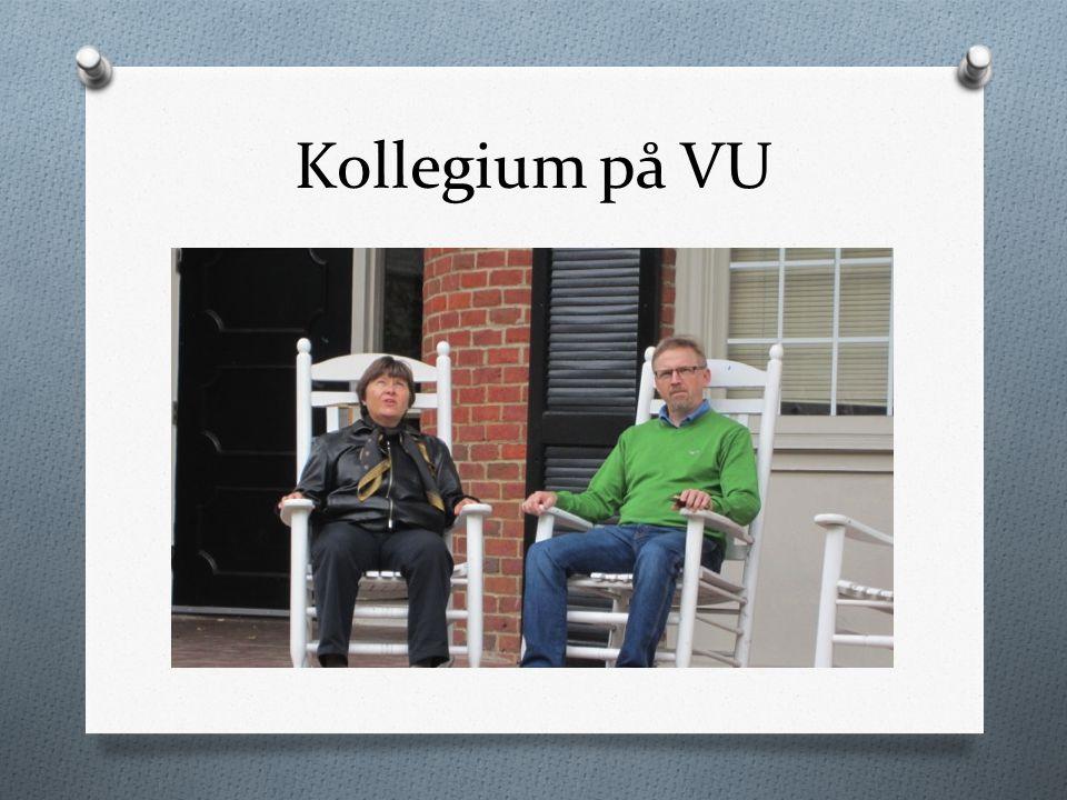 Kollegium på VU