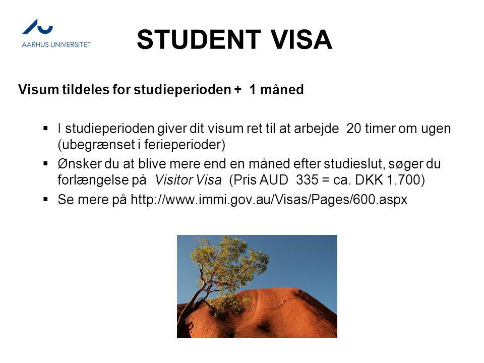 STUDENT VISA Visum tildeles for studieperioden + 1 måned  I studieperioden giver dit visum ret til at arbejde 20 timer om ugen (ubegrænset i ferieperioder)  Ønsker du at blive mere end en måned efter studieslut, søger du forlængelse på Visitor Visa (Pris AUD 335 = ca.
