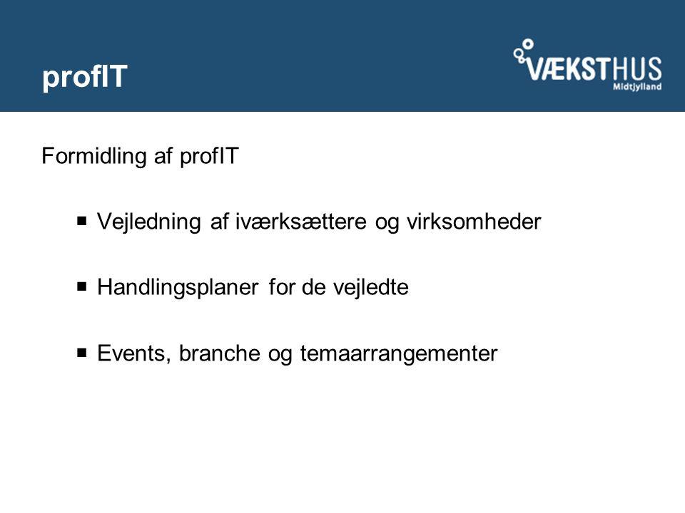 profIT Formidling af profIT  Vejledning af iværksættere og virksomheder  Handlingsplaner for de vejledte  Events, branche og temaarrangementer