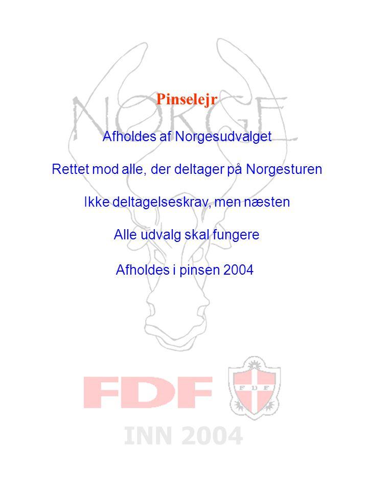 INN 2004 Pinselejr Afholdes af Norgesudvalget Rettet mod alle, der deltager på Norgesturen Ikke deltagelseskrav, men næsten Alle udvalg skal fungere Afholdes i pinsen 2004