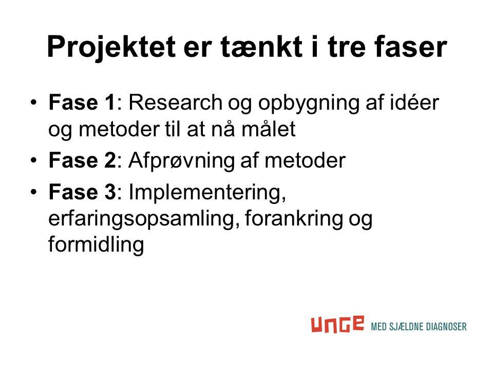 Projektet er tænkt i tre faser •Fase 1: Research og opbygning af idéer og metoder til at nå målet •Fase 2: Afprøvning af metoder •Fase 3: Implementering, erfaringsopsamling, forankring og formidling