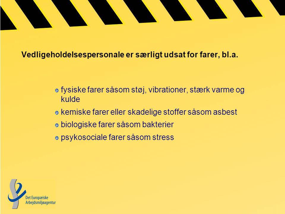Vedligeholdelsespersonale er særligt udsat for farer, bl.a.